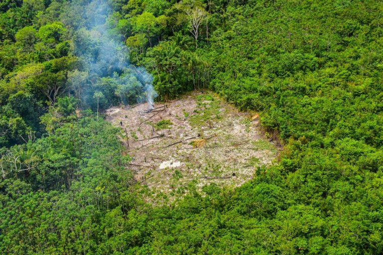 Vista aérea de área desmatada na floresta amazônica