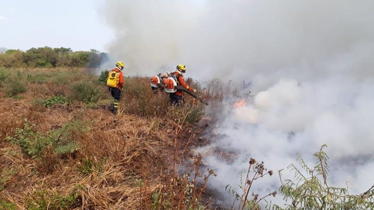 Meio Ambiente - queimada e desmatamento - Após 16 dias atuando no combate aos incêndios florestais na região do Pantanal, no Mato Grosso do Sul (MS), cinquenta bombeiros militares retornaram ao Distrito Federal na madrugada deste domingo (25/10)
