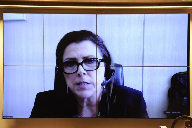 Diretora da 3ª Diretoria da Agência de Vigilância Sanitária - Anvisa, Cristiane Rose Jourdan Gomes
