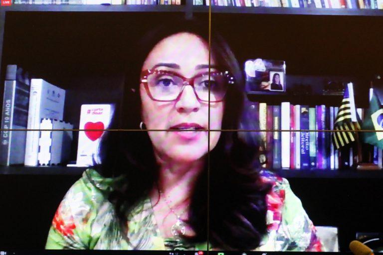 Deputada Rejane Dias participa de videoconferência