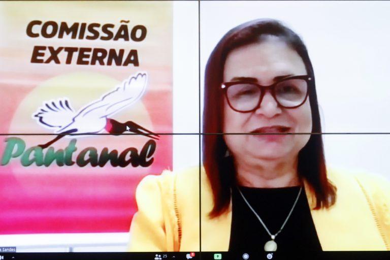 Relatório do Bioma Pantanal da Coordenadora. Dep. Professora Rosa Neide(PT - MT)