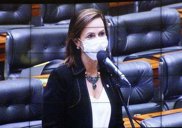 Votação de propostas legislativas. Dep. Professora Dorinha Seabra Rezende(DEM - TO)