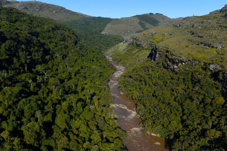 Meio Ambiente - parques e florestas - ecossistema flora rios natureza preservação ambiental (Parque Estadual do Guartelá-PR)