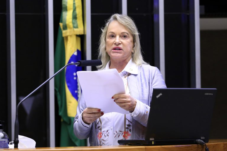 Sessão para a votação de propostas legislativas. Relatora do parecer sobre a prisão do deputado Daniel Silveira (PSL-RJ), dep. Magda Mofatto(PL - GO)