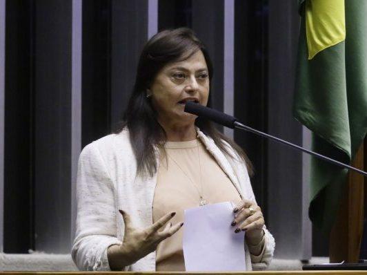 Sessão para a votação de propostas. Dep. Alice Portugal (PCdoB - BA)