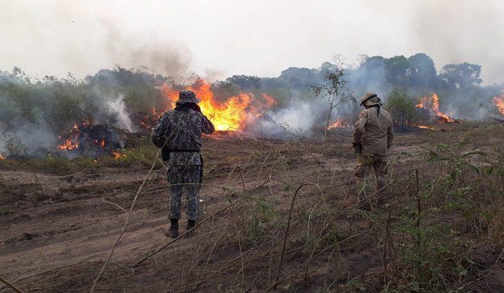 Meio Ambiente - queimadas e desmatamento Sem previsão de chuvas no Pantanal, combate aos focos de calor se intensifica em sete frentes??