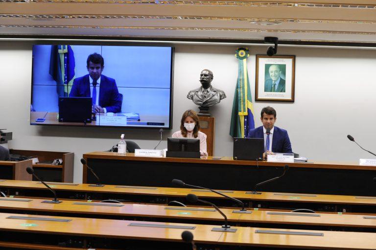 Atualização da Situação da Covid-19 no Brasil. Dep. Carmen Zanotto (CIDADANIA - SC) e dep. Dr. Luiz Antonio Teixeira Jr. (PP - RJ)