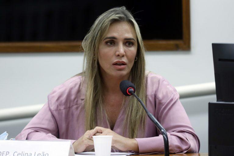Novo Código Eleitoral Brasileiro. Dep. Celina Leão(PP - DF)