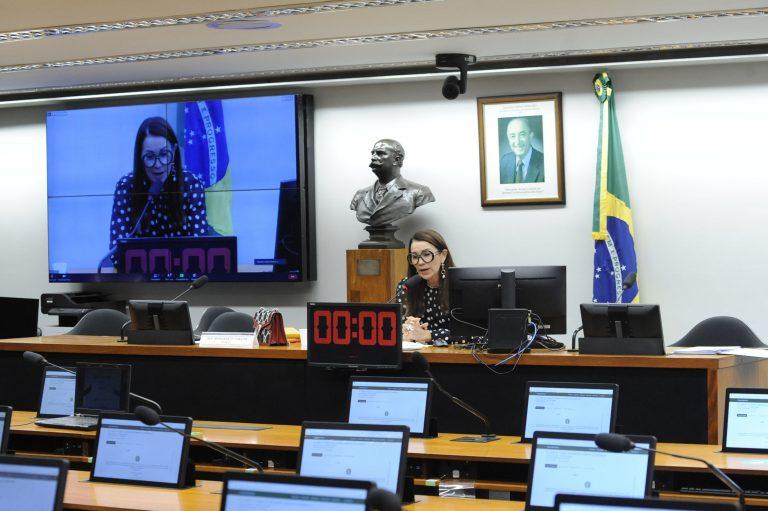 Audiência Pública - Fluxo do envio de propostas das entidades da sociedade. Dep. Margarete Coelho (PP - PI)