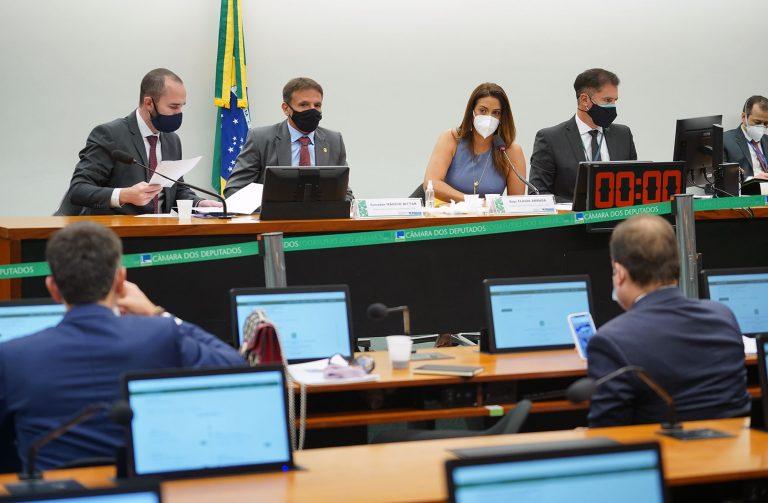Discussão e votação de propostas. Sen. Márcio Bittar e dep. Flávia Arruda (PL - DF)