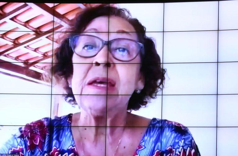 Deputada Lídice da Mata participa de votação por meio de videoconferência. Ela fala olhando para a tela do computador