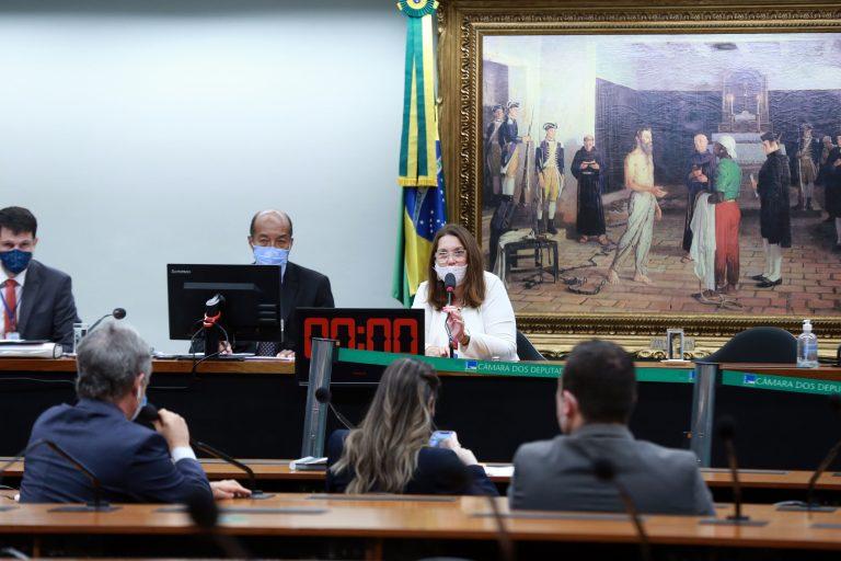 Reunião deliberativa. Dep. Bia Kicis (PSL - DF)