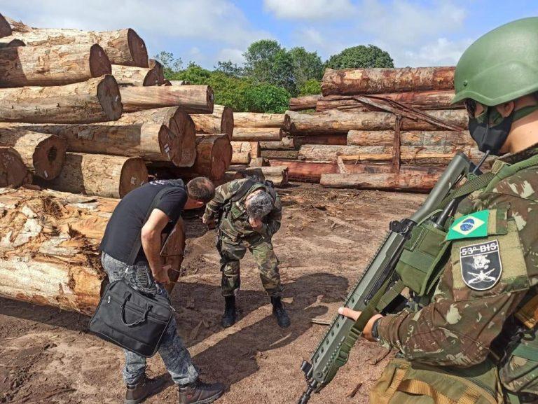 Policial e militares inspecionam pilhas de toras de madeira apreendidas