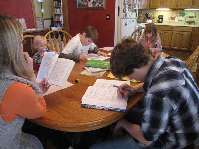 Educação - geral - ensino domiciliar alunos família homeschooling
