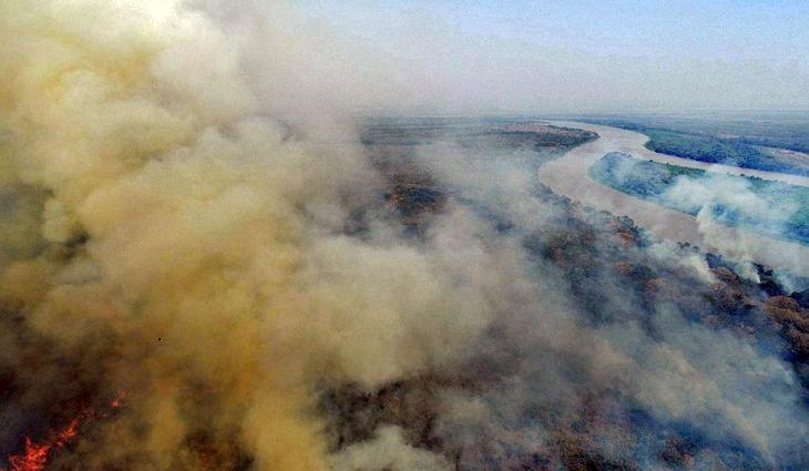 Meio Ambiente - queimada e desmatamento - biomas Pantanal preservação ambiental (queimadas na região do Pantanal, Mato Grosso do Sul)