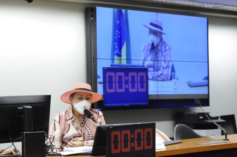 Audiência Pública - Construção de Políticas Públicas Voltadas ao Fortalecimento das ILPIs. Dep. Tereza Nelma (PSDB - AL)