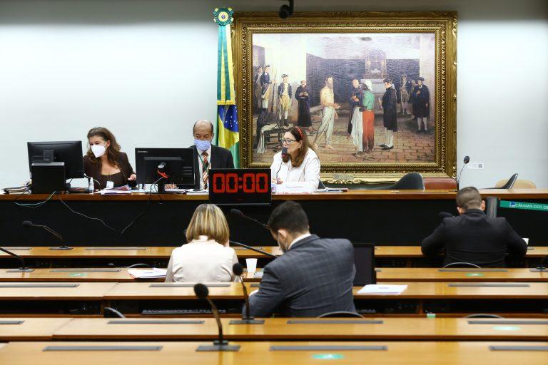Reunião Deliberativa. Dep. Bia Kicis(PSL - DF)