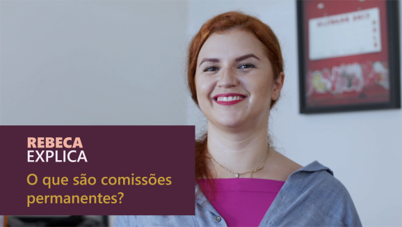 Rebeca explica - Comissões Permanentes