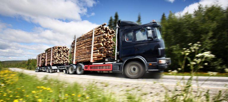 Caminhão carrega madeira numa estrada