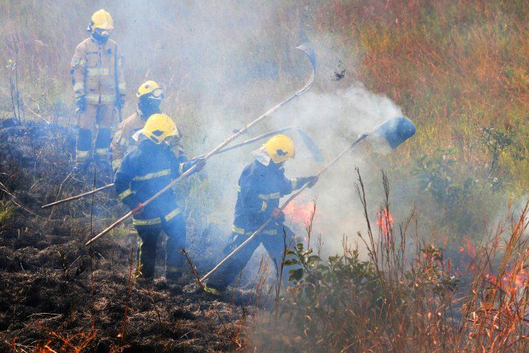 Meio Ambiente - queimada e desmatamento - bombeiros combate chamas cerrado
