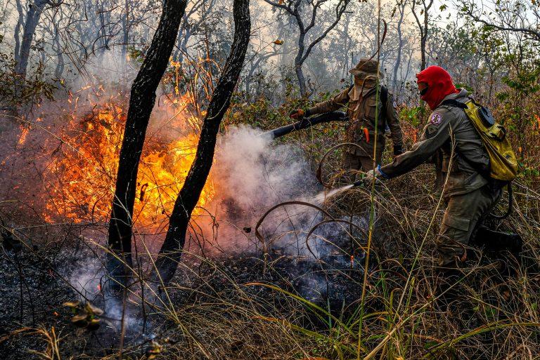 Meio Ambiente - queimada e desmatamento - florestas matas (bombeiros combatem incêndio em mata de Mato Grosso, 12/8/20)
