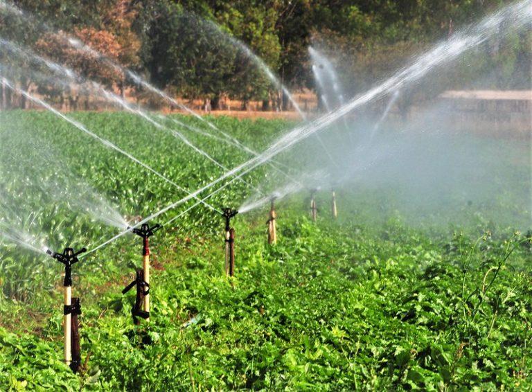 Irrigação de plantação