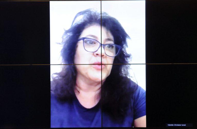 Reunião deliberativa. Dep. Christiane de SouzaYared(PL - PR)
