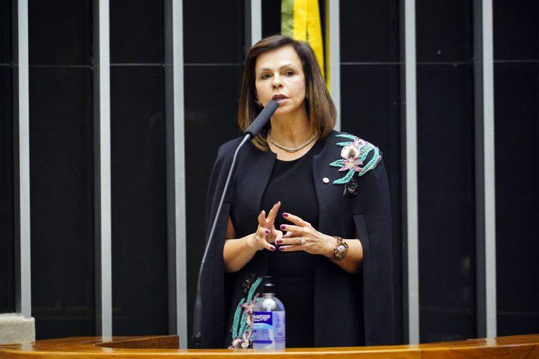 Deputada Professora Dorinha Seabra Rezende discursa no Plenário da Câmara