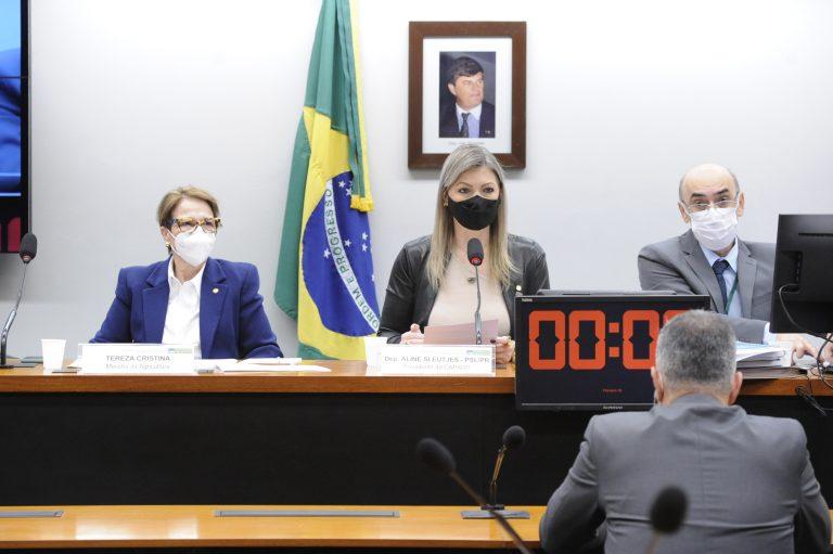 Várias pessoas usam máscara e estão sentadas à mesa com microfones à sua frente