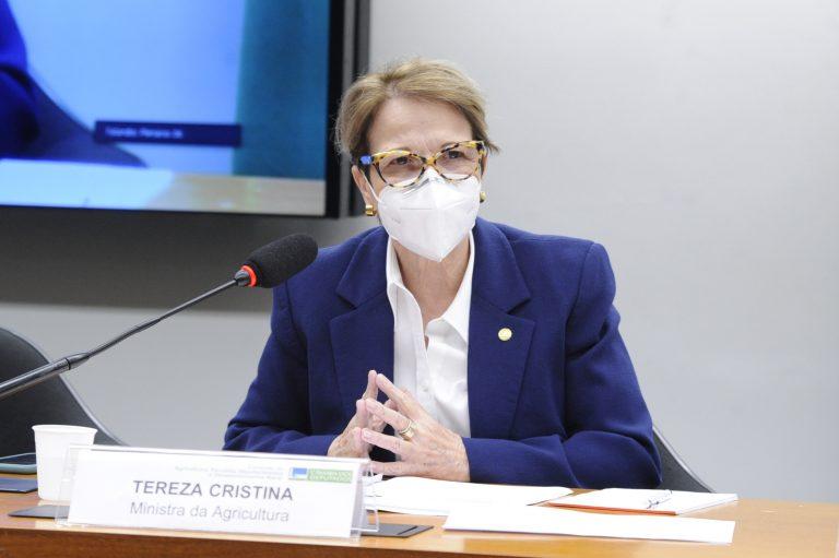 Ministra Tereza Cristina está sentada falando ao microfone. Ela veste um terno azul e usa máscara
