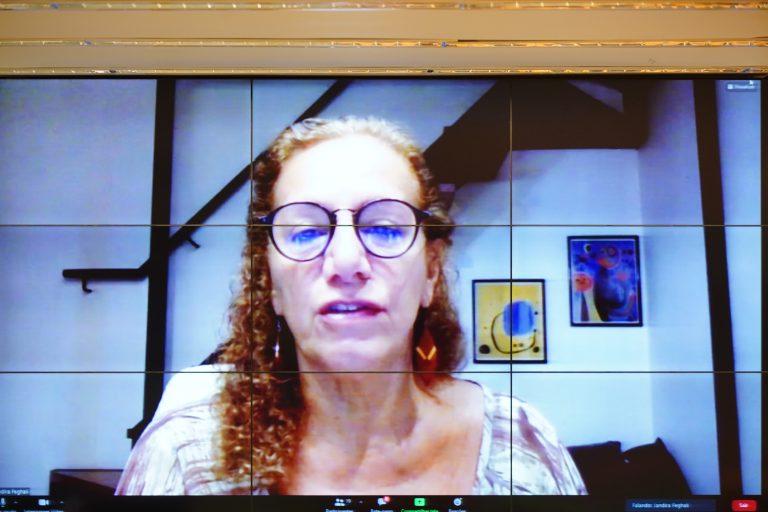 Deputado Jandira Feghali participa de videoconferência. Ela fala olhando para a tela do computador