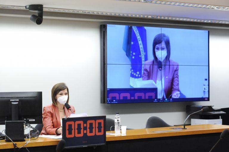Dep. Professora Dorinha Seabra Rezende (DEM - TO) preside a audiência