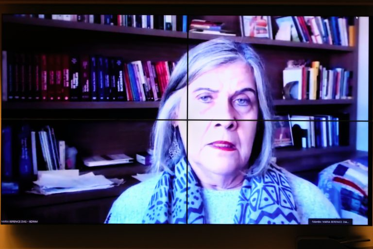 Audiência Pública - Debater o PL 4.302/16 (União Poliafetiva). Vice-Presidente do Instituto Brasileiro de Família - IBDFAM, Maria Berenice Dias