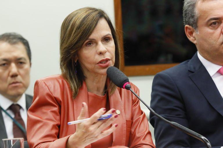 Discussão e votação do parecer da relatora. Dep. Professora Dorinha Seabra Rezende (DEM - TO)