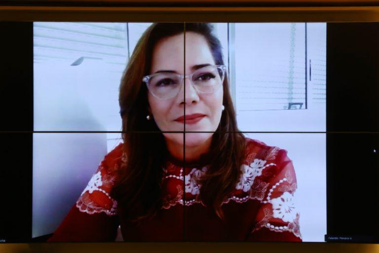 Deputada Mara Rocha em reunião de comissão
