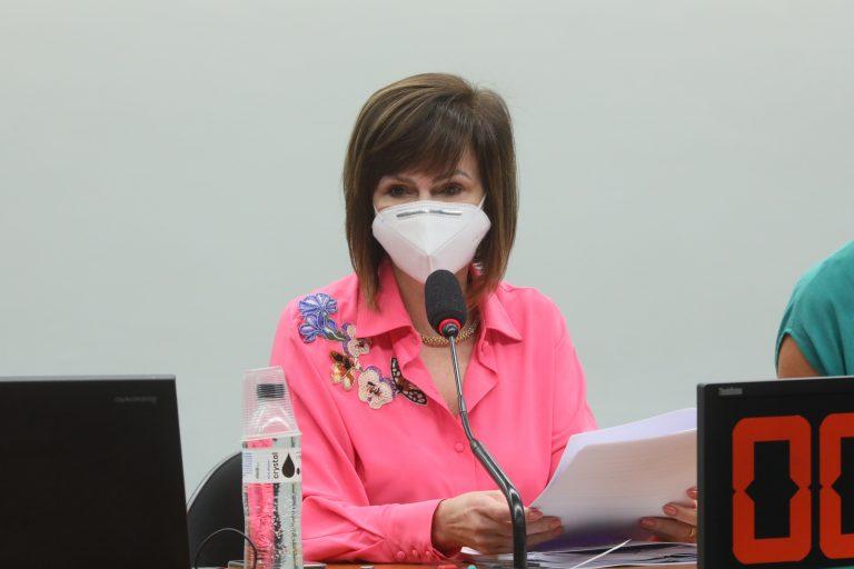 Deputada Professora Dorinha na reunião da comissão