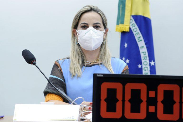 Audiência Pública - Debater o PL 4815/2019 (Órgãos responsáveis pela segurança pública). Dep. Policial Katia SastrePL - SP