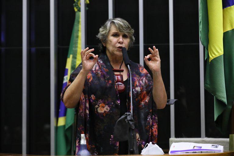 Deputada Erika Kokay discursa no Plenário da Câmara