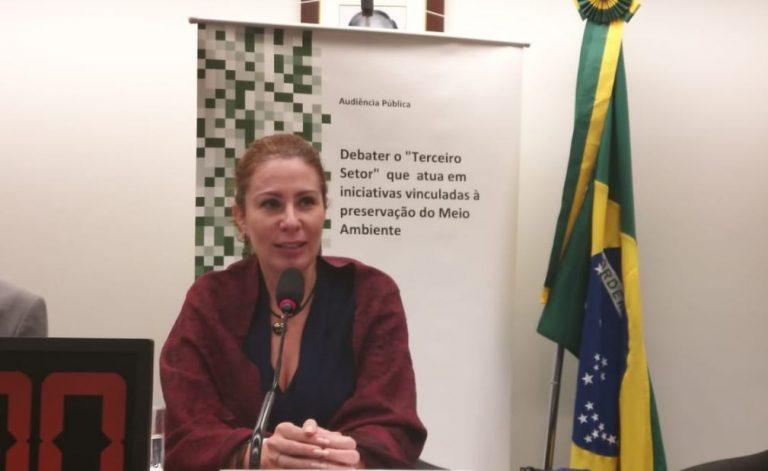 Carla Zambelli preside reunião da comissão