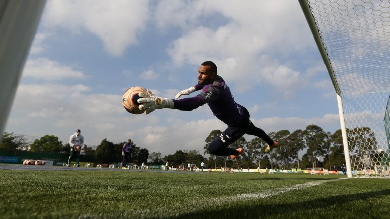 Esporte - futebol - atletas modalidades campeonatos goleiros treinadores físicos (treino do time do Palmeiras)
