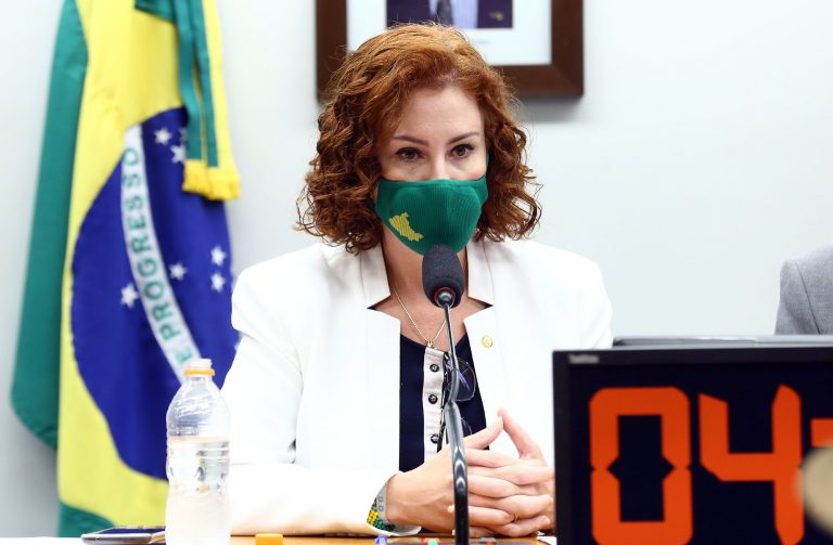 Reunião Deliberativa. Dep. Carla Zambelli(PSL - SP)