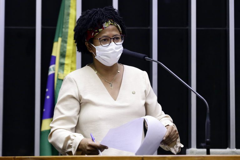 Discussão e votação de propostas. Dep. Silvia CristinaPDT - RO