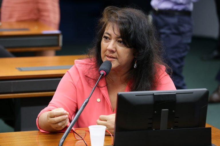 Deputada Christiane de Souza Yared fala ao microfone. Ela está sentada e usa uma blusa rosa