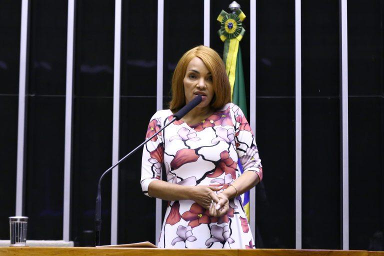 Discussão e votação de propostas. Dep. FlordelisPSD - RJ
