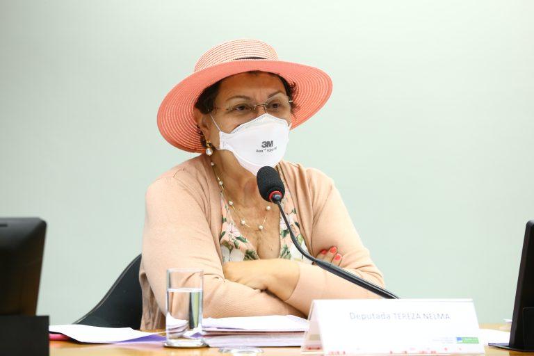 Audiência Pública - Delegacias especializadas de atendimento à mulher vítima de violência. Dep. Tereza NelmaPSDB - AL