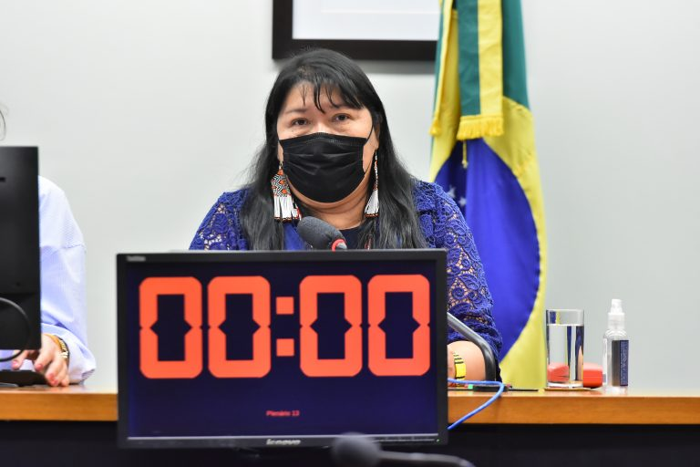 Audiência Pública - Avanços e desafios desde a demarcação da Terra Indígena Raposa Serra do Sol em Roraima. Dep. Joenia WapichanaREDE - RR