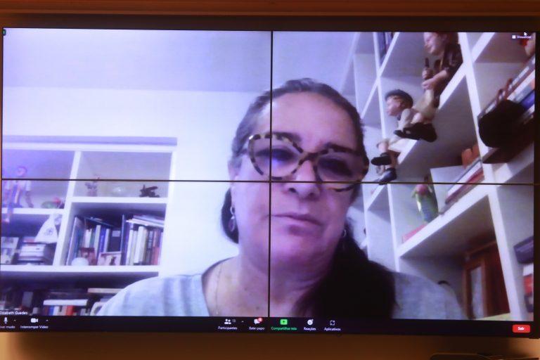 Audiência Pública - Educação a Distância no Ensino Superior. Presidente da Associação Nacional das Universidades Particulares - ANUP, Elizabeth Guedes