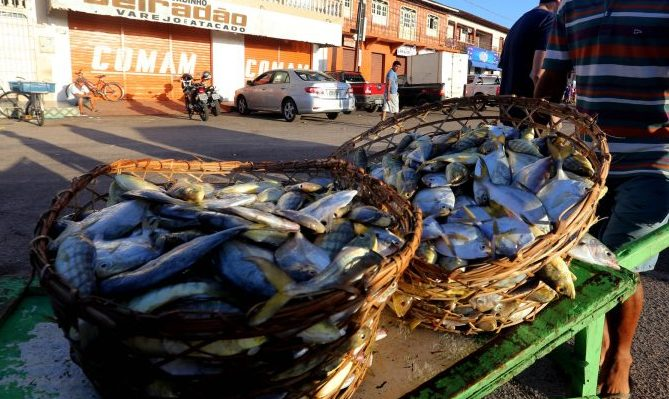 Economia - indústria e comércio - comércio informal ambulantes peixes peixaria pesca pescador