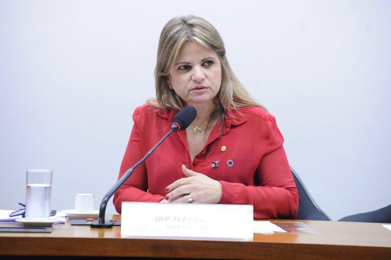 """Audiência Pública - Tema: """"Centenário da OIT: Avaliação de resultados da 108ª Conferência"""". Dep. Flávia Morais (PDT-GO)"""