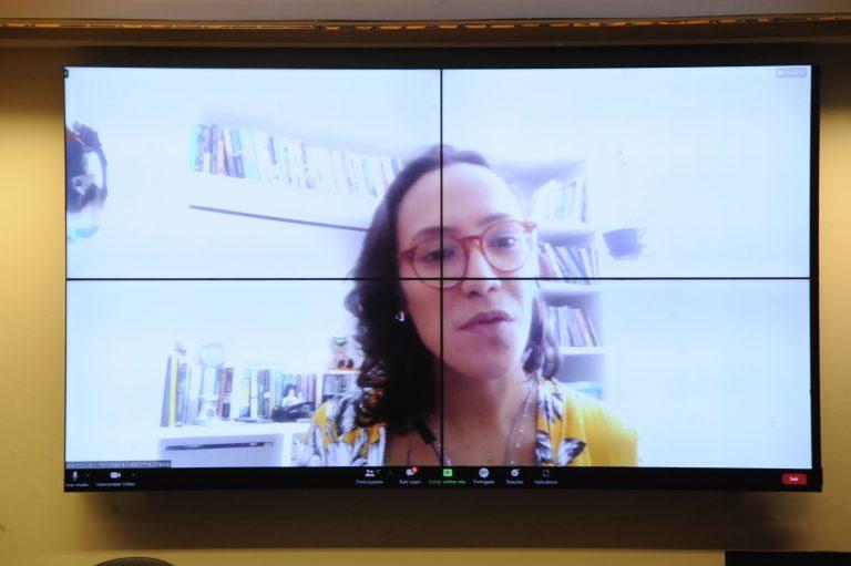 Audiência Pública - Observatório RPU - Direito à manifestação e à organização. Representante do Intervozes e da Plataforma Dhesca, Iara Moura